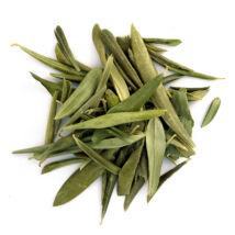 Olivalevél BIO (Olea europaea) - 50 gr