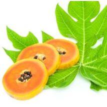 Papaya levél (Carica papaya) - 50 gr