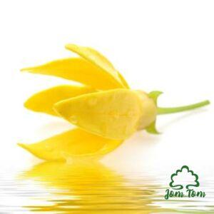 Ylang illóolaj (Cananga odorata) - 100 ml