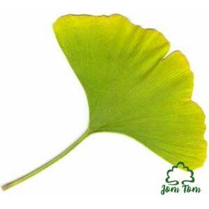 Ginkgo Biloba por (Páfrányfenyő) - 100 gr
