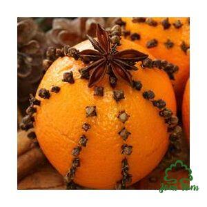 Szegfűszeg illóolaj (Eugenia caryophyllata) - 10 ml