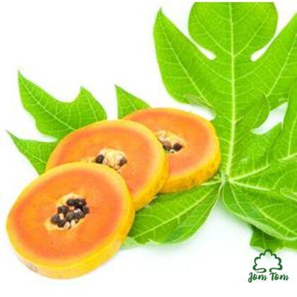 Papaya levél (Carica papaya)